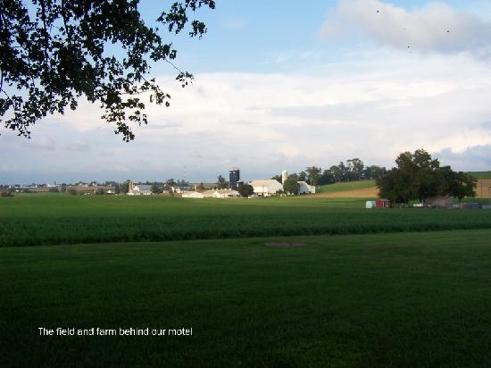 Amish Country Motel: Beautiful view behind our motel