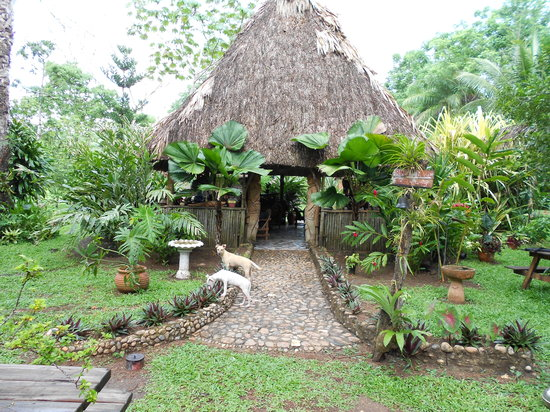 Macaw Bank Jungle Lodge: Restaurant entrance
