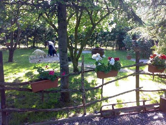 Fornovo di Taro, Itálie: giardino del bed&breakfast
