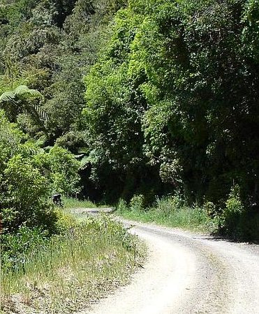 Motu Road : ROAD LESS TRAVELLED