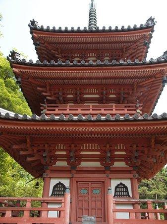Uji, Japan: 三室戸寺にある塔です、花がない時期これぐらいしか見るものがない様です。