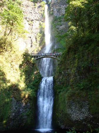Multnomah Falls: View from the bottom
