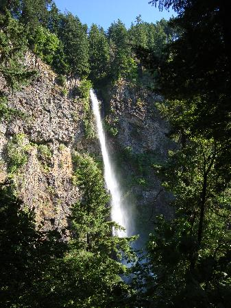 Cataratas Multnomah: View from the hike