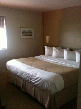 Hotel & Suites Le Dauphin Quebec : chambre lit king