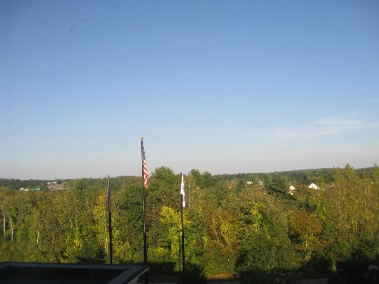 Hampton Inn & Suites Manchester - Bedford: view of trees out window