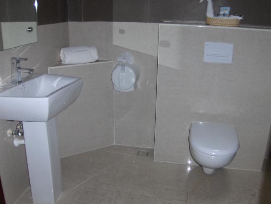 Hotel Dubrovnik: baños
