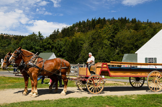 Acadia National Park, ME: Carriages of Acadia