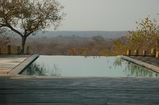 Casart Game Lodge: A view from the infinity pool