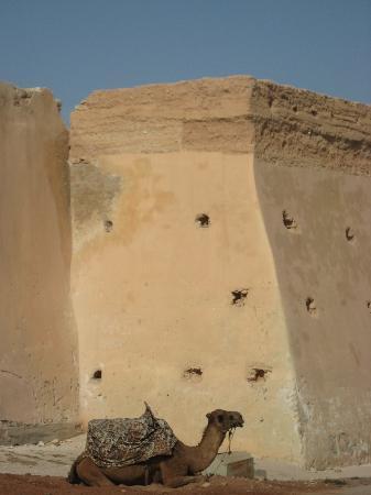 Agadir Kasbah: Kasbah