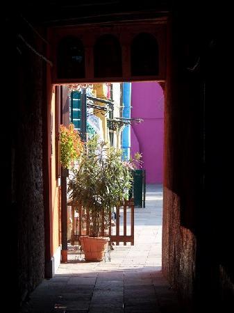 Uno scorcio di burano foto di venezia citt di venezia - Foto di uno shamrock ...
