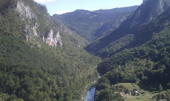 Queen of Montenegro : Tara gorge