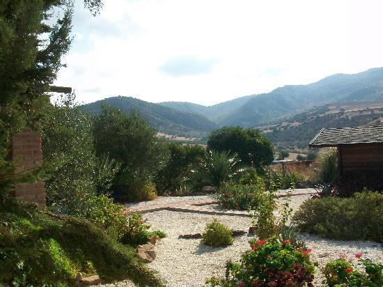 Cortijo Valverde: View from garden