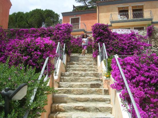 Residenza Borgo Punta Villa: Che natura !!!