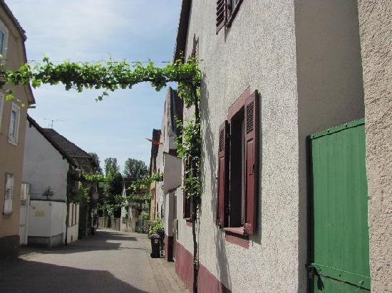 Alten Amtshaus: view
