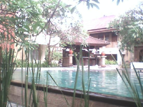 Fourteen Roses Hotel: swimming pool