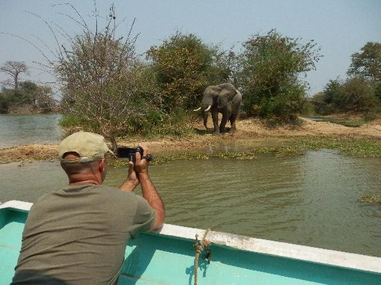 Gache Gache Lodge: Game viewing by boat