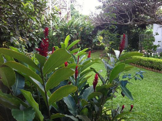 Shangri-La Hotel Uganda Ltd.: garden