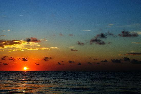 Ocean Coral & Turquesa: Sunrise from the beach