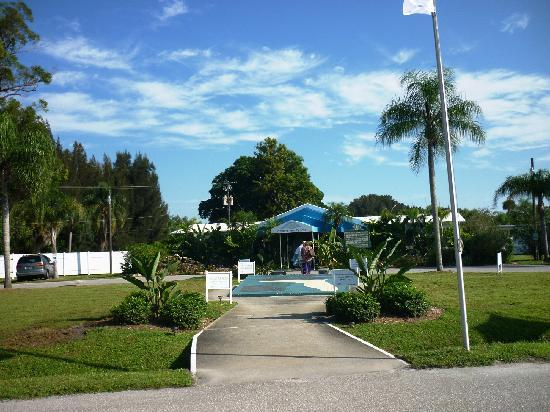 Warm Mineral Springs: A beautiful Day
