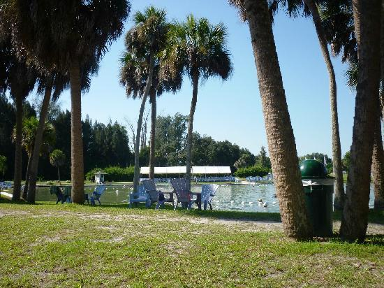 North Port, FL: Natural spring