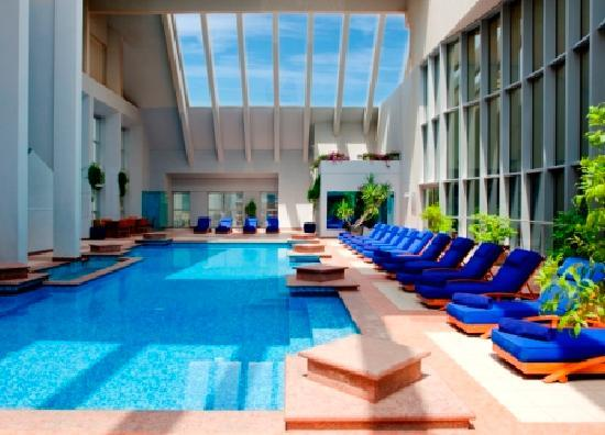 Dusit  Thani Dubai: Dusit Thani Dubai's Rooftop Pool