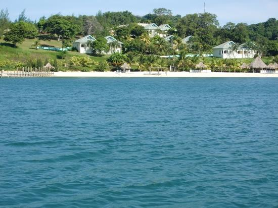 Turquoise Bay Dive & Beach Resort: turquoise bay water view cabins