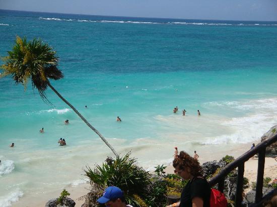 The Reef Playacar: Tulum