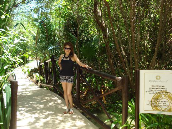 The Grand Mayan at Vidanta Riviera Maya: entrada alberca  gran