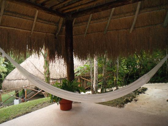 the explorean kohunlich by fiesta americana  cabana hammock cabana hammock   picture of the explorean kohunlich by fiesta      rh   tripadvisor