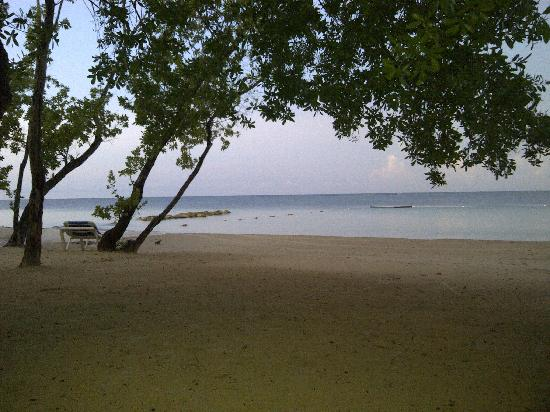 Sandals South Coast: My view evey morning from my hammock!