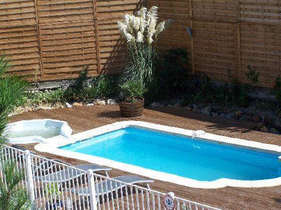 Les Fleurs Bleues: piscine et spa