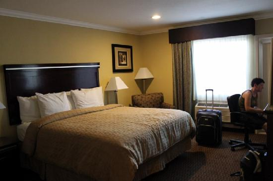 Econo Lodge Inn & Suites: Room