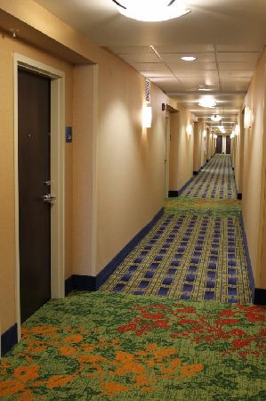 Holiday Inn Express & Suites Dayton South: Hallway