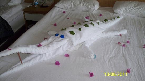 Sherwood Dreams Resort: Special birthday towel art