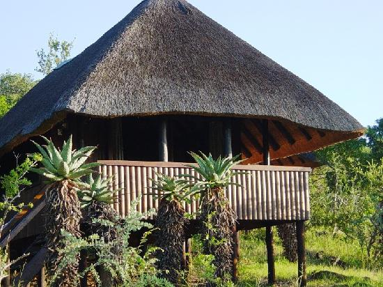 Mvubu River Lodge 사진