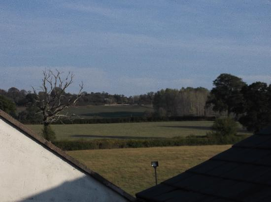 The Old Hand & Diamond: View from Bedroom