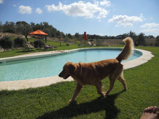 La Bell'Antiglia: la piscina