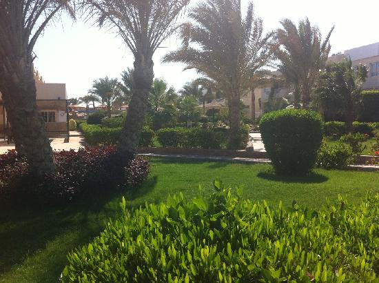 beautiful greenery in The Movie Gate Hurghada 4, Єгипет,  Хургада - photo