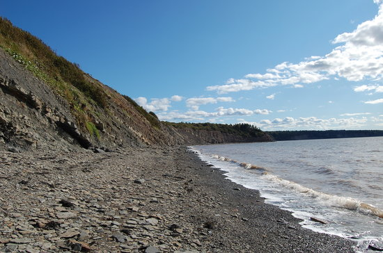 Joggins Fossil Cliffs Centre