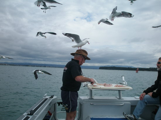 Bay of Plenty Region, New Zealand: Russ fillets the fish