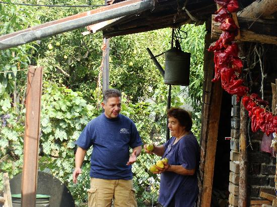 Casa Ferrari B&B: Ludmil getting pears and peppers for us from locals