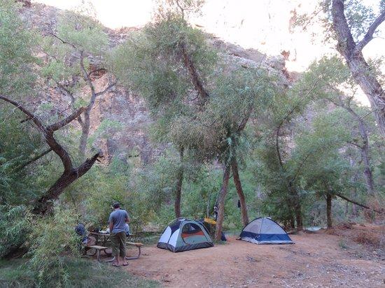 Havasu Falls Campground: Campground