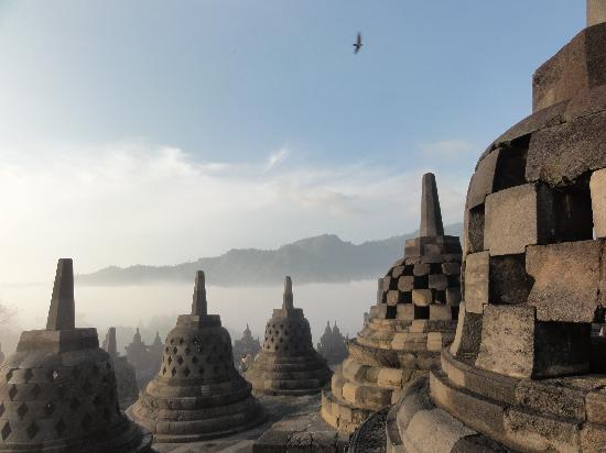 Amanjiwo Resorts: Borobudur