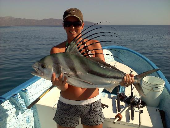 My rooster fish picture of tailhunter international for Rooster fish pictures