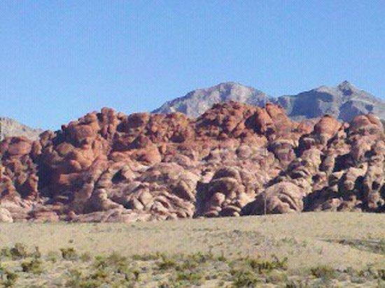 Annie Bananie Las Vegas Tours - Private Tours: Red Rock Canyon