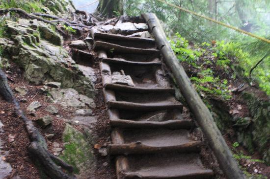 The Grouse Grind: Essentially a ladder up....