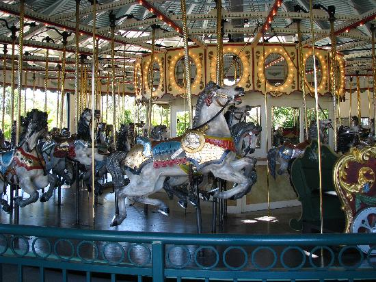 Saint Paul, MN: merry go roung