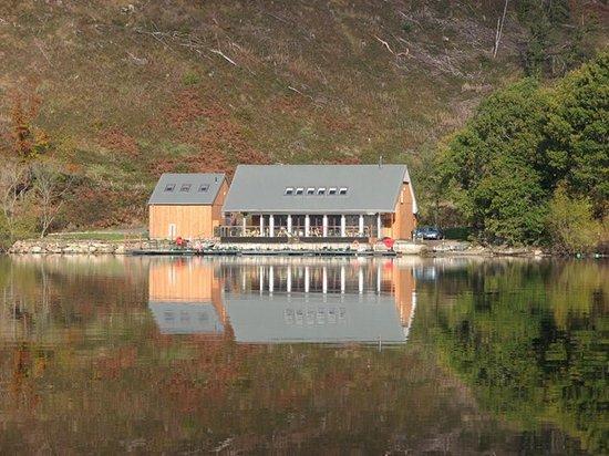 Venachar Lochside : Venachar-Lochside from one of our boats