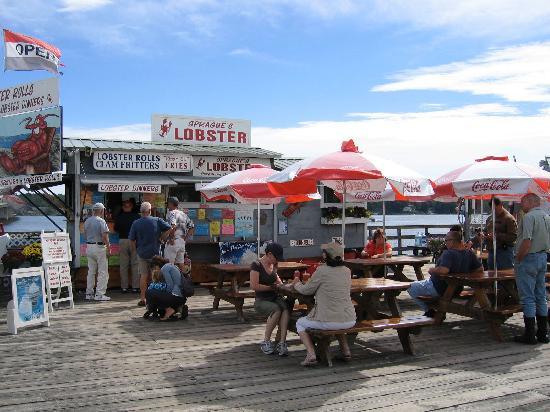 Sprague's Lobster: Sprague's Lobster shack.