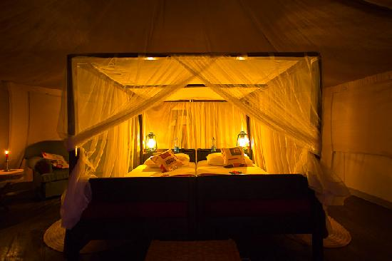 Cheetah Tented Camp : Our bed